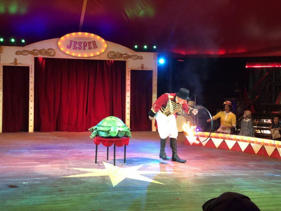 Sirkus Jesper